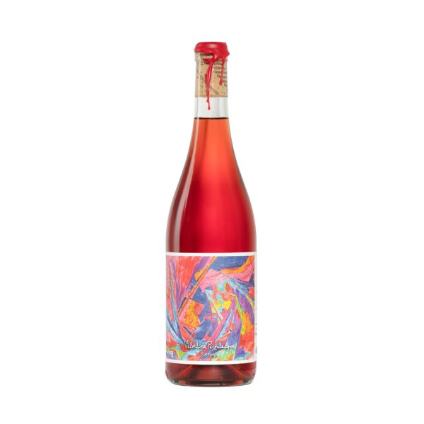 valentina passalacqua natural wine switzerland vin nature suisse pet nat